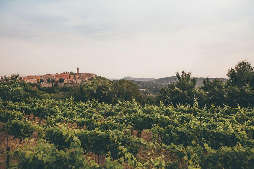 Wedding in Labin Istria_001