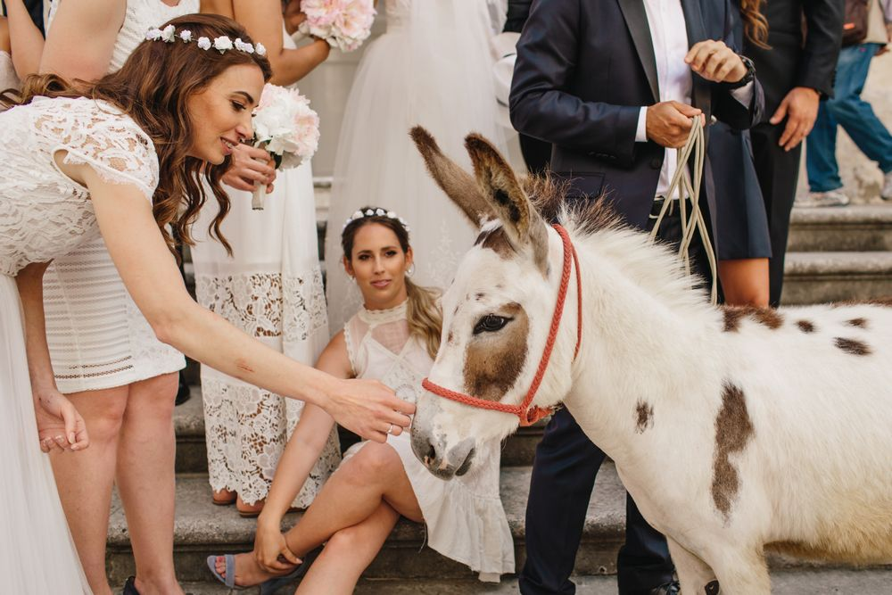Wild-wedding-in-dubrovnik-wedding-photographer-Alyssa-Davor-DTstudio-067
