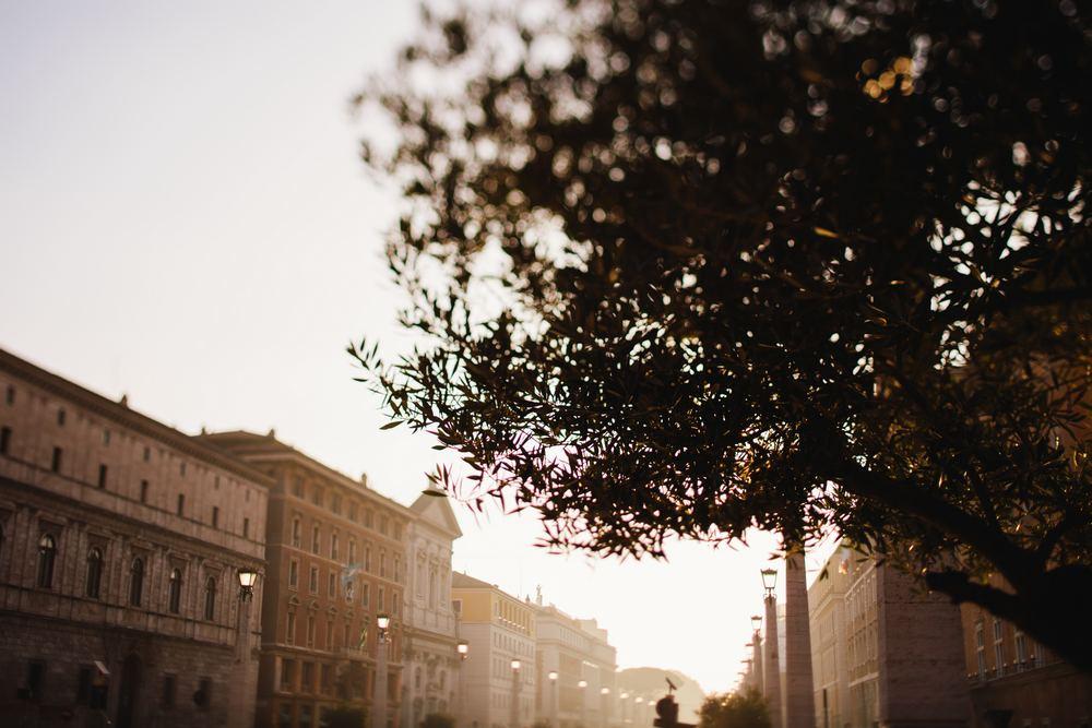 Vu blog_001