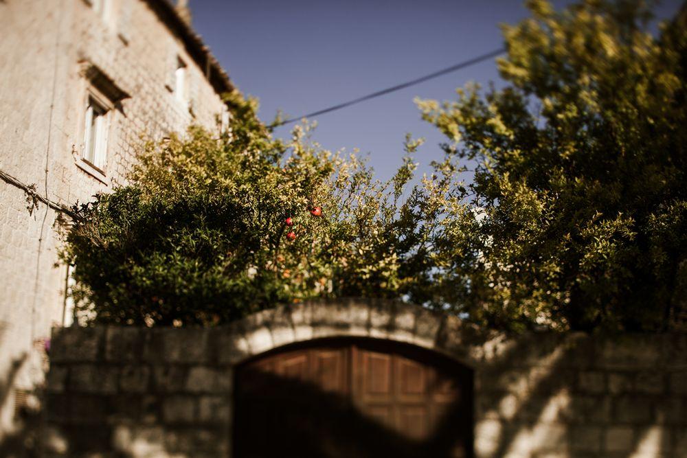 Destination wedding photographer_Stephanie&Yossi_029