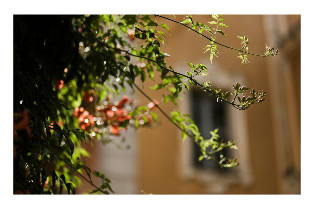 Italian lakes weddings_lake orta wedding_DT studio_016