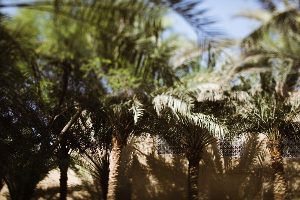 Desert session_36